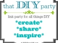 That DIY Party  diyshow