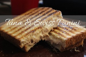 Tuna & Swiss Panini