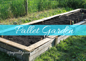 Pallet Garden: A Raised Garden for Cheap