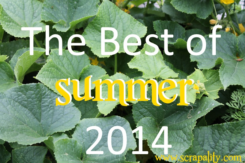 Best of Summer 2014 Roundup-Throwback Thursday
