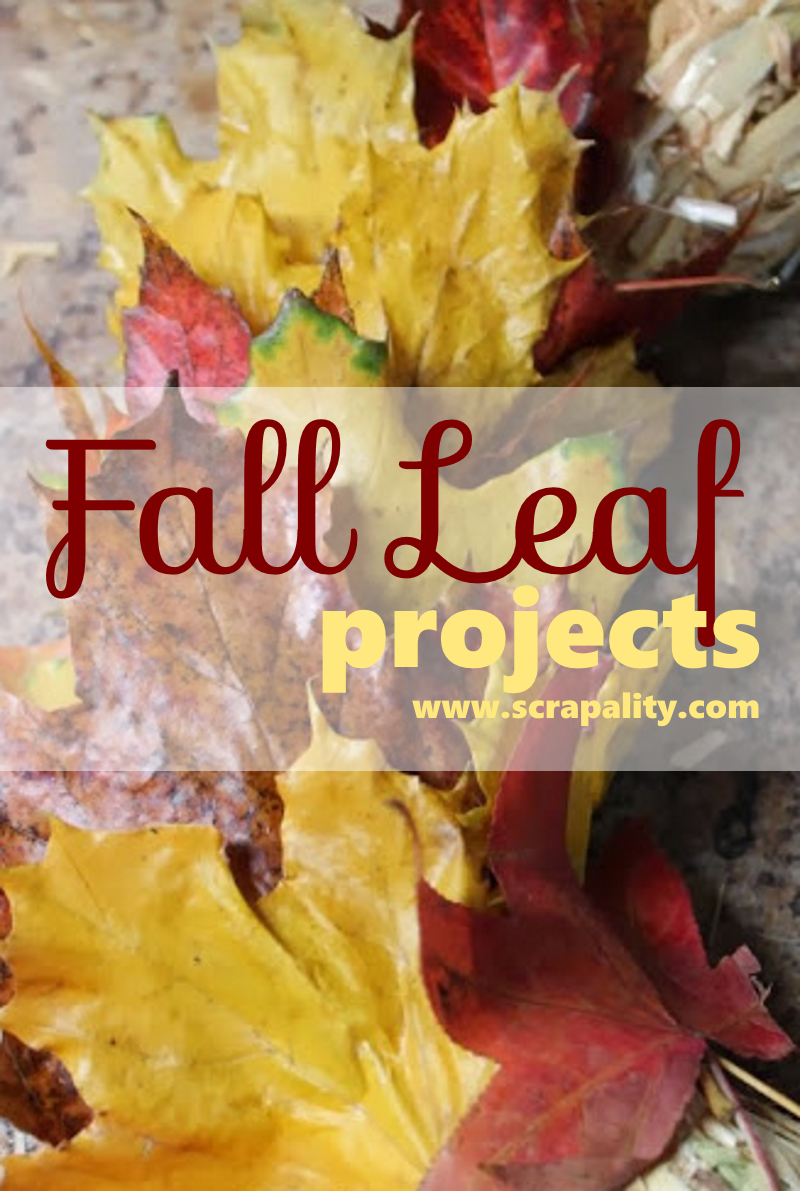 fall leaf projects
