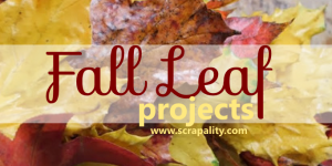 Fall Leaf Projects for the Home