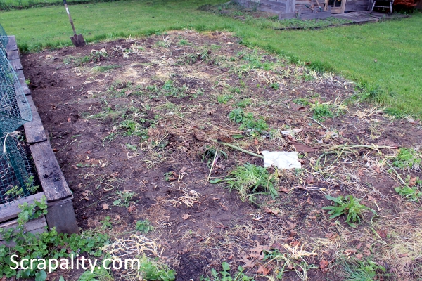 2015 Garden Hack Update Using Cardboard Part Two