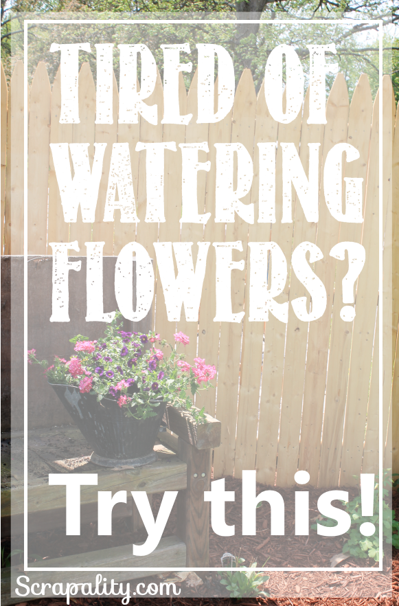 Tired of Waterig Flowers Try This