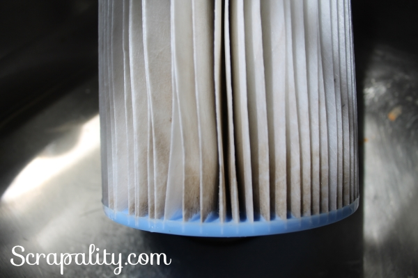 How To Clean a Intex Filter Up Close