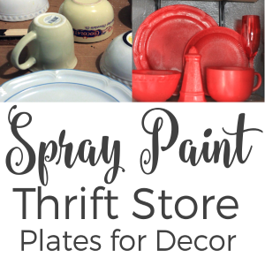 Spray Paint Thrift Store Plates for Kitchen Decor