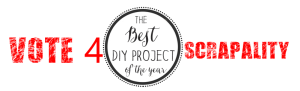 Scrapality Made the Top 10 DIY Project of the Year!