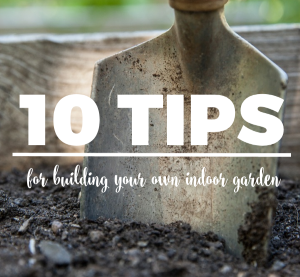 10 Tips for Building Your Own Indoor Garden
