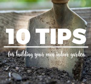 10 Tips for Building Your Own Indoor Garden