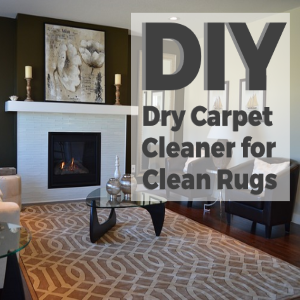 DIY Dry Carpet Cleaner for Clean Rugs at all Times