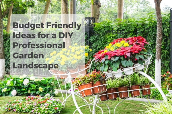 Budget Friendly Ideas For a DIY Professional Garden Landscape