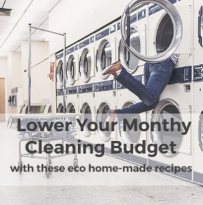 Lower your Monthly Cleaning Budget with these Eco Homemade Recipes