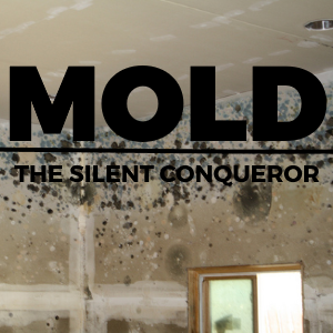 Mold The Silent Conqueror