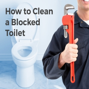 How to Clean a Blocked Toilet – A Couple of Tips