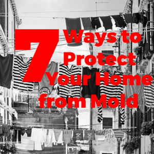 7 Ways to Protect Your Home from Mold