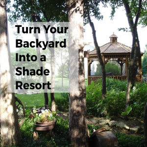 Summer Project: Turn Your Backyard Into A Shade Resort