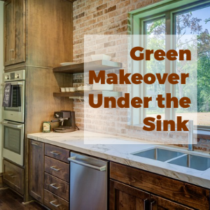 Green Makeover Under the Kitchen Sink