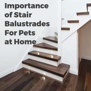 Importance of Stair Balustrades For Pets at Home