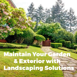 How Could You Maintain Your Garden and Renovate Your Exterior with Some Landscaping Solutions?