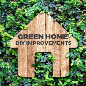 Green Home- DIY Improvements