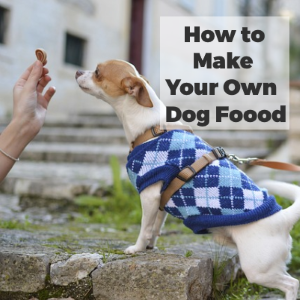5 Reasons to Make Your Own Dog Food