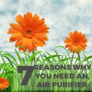 7 Reasons Why You Need to Have an Air Purifier in Your Home