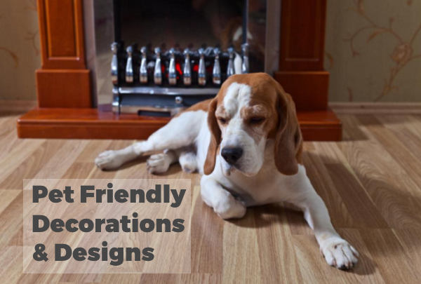 Pet-Friendly Decoration and Design