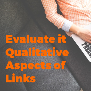 Evaluate The Qualitative Aspects of Links Before Including It in Your Backlink Repository