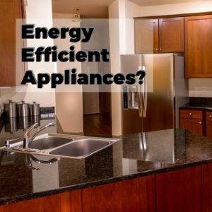 Energy Efficient Appliances: Green Frugality at Its Best