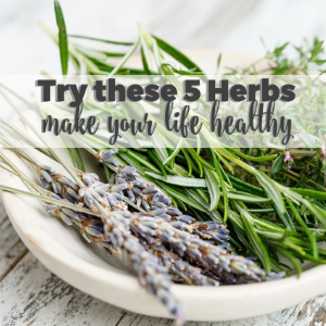 Try These 5 Herbs to Make your Life Healthy