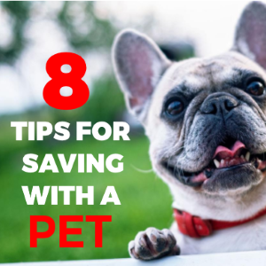 8 Tips For Saving With A Pet