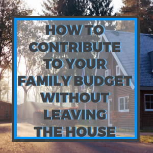 How to Contribute to Your Family Budget Without Leaving the House