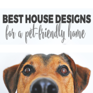 Best House Designs for a Pet-Friendly House