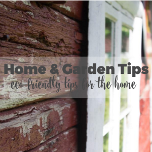 Home and Garden DIY Tips: Eco Friendly Materials for Homes that You Can Use During Renovation