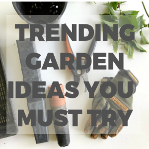 Trending Garden Ideas That You Absolutely Must Try