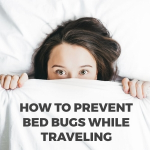 How to Prevent Getting Bed Bugs When Traveling