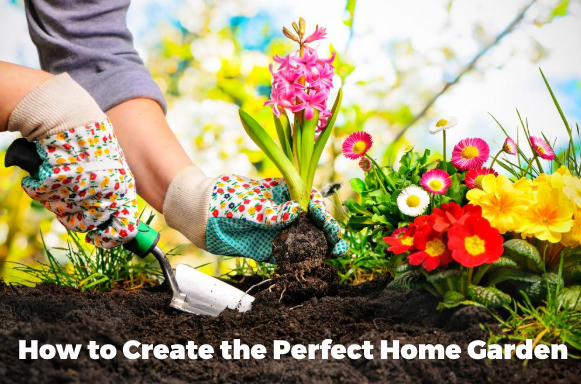 How to Create the Perfect Garden