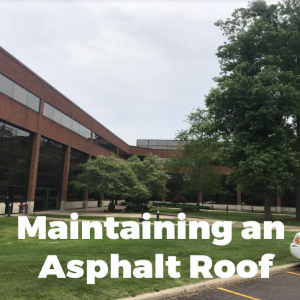 Maintaining an Asphalt Roof