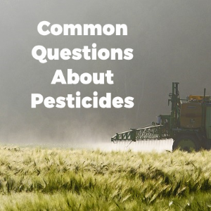 Common Questions Regarding Pesticides and Their Use