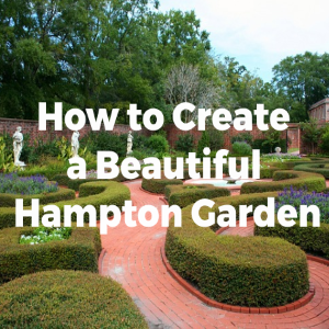 How to Create a Beautiful Hamptons Style Garden