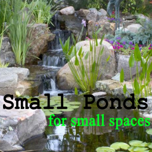 Small Ponds For Small Spaces