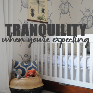 How To Create Tranquility In Your Home When Expecting
