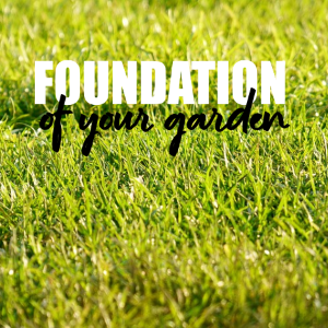 Making The Lawn The Foundation Of Your Garden