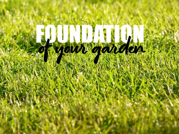 Foundation Of Your Garden