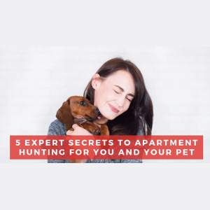 5 Expert Secrets to Apartment Hunting for You and Your Pet