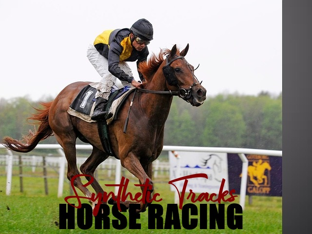 synthetic tracks for horse racing