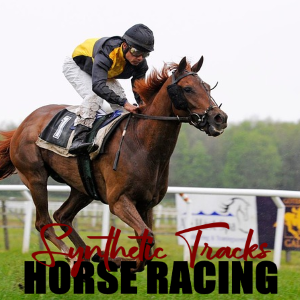 Understanding Synthetic Tracks for Horse Racing