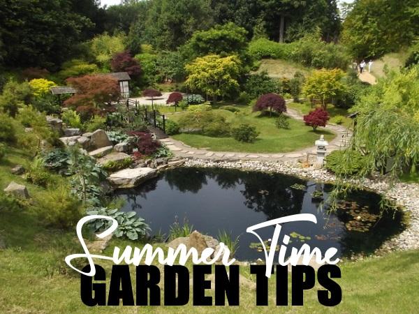 Summer Time Garden Tips
