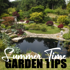 Summer Time Garden Tips