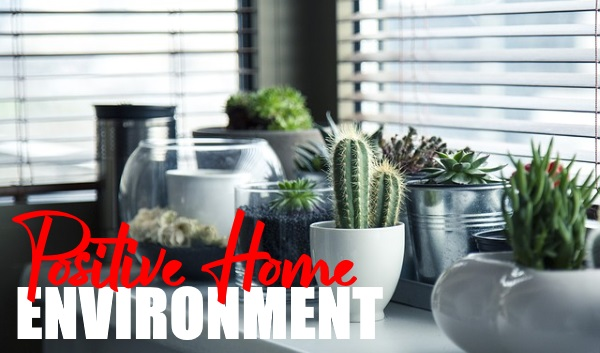 Create A Positive Home Environment